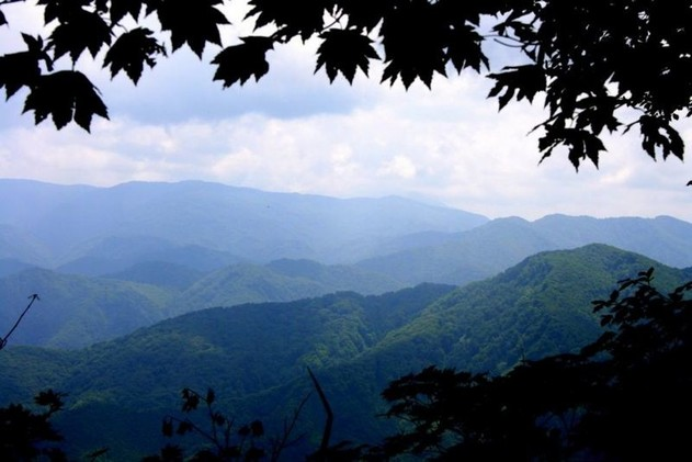 Shirakami-Sanchi (isla Honshu), conserva los últimos vestigios de los bosques templados de Japón